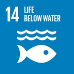 Goal 14. Life Below Water by Inter-agency and Expert Group on SDG Indicators, United Nations